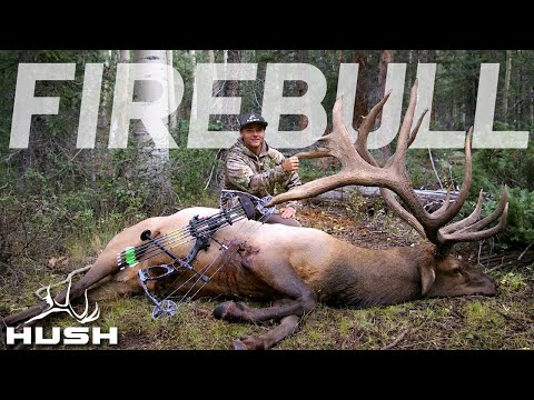 THE CRAZIEST ARCHERY ELK HUNT EVER!! THE FIRE BULL