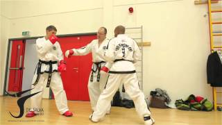 Taekwon-Do ITF -  Sparring Seminar Master Don Dalton