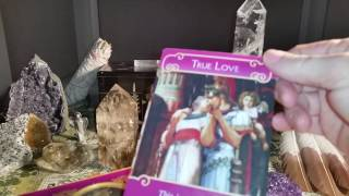 DAILY TAROT LOVE, BIRTHDAY & GENERAL MESSAGES - MARCH 1, 2017