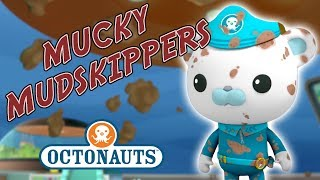 Octonauts - Mucky Mudskippers | Troublesome Creatures