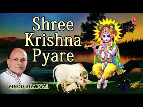 SHREE KRISHNA PYARE KRISHNA BHAJAN BY VINOD AGARWAL I AUDIO SONG I ART TRACK