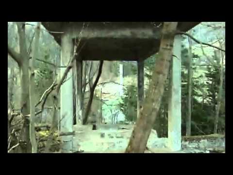 [1/5] Viktor Schauberger ~ Comprehend & Copy Nature ~