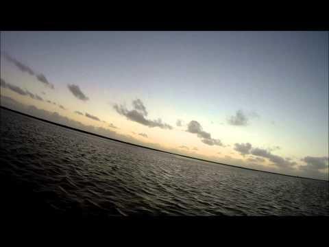 jagt i Vestjylland 2 2014 (hunting in denmark)