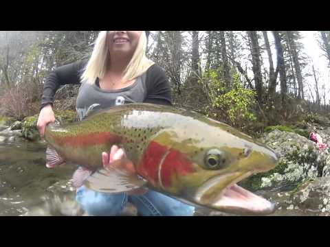 Winter Steelhead Fishing | Big Fish & Beautiful Scenery