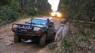 wombat state forest 4wd nightrun