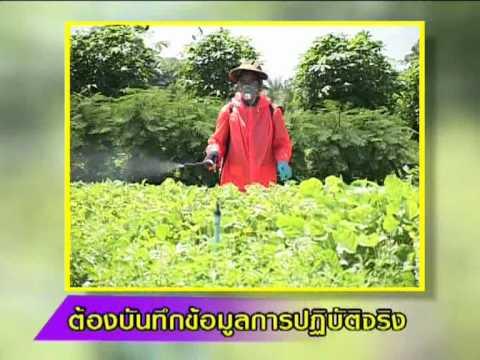 รู้เพิ่มเติมค่าเกษตร พืชสมุนไพรเศรษฐกิจพอเพียง2a
