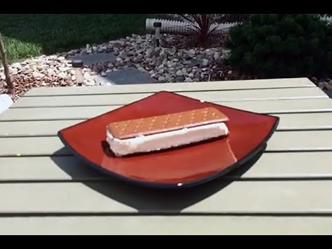 Walmart Ice Cream Sandwich Won't Melt! We Prove It.