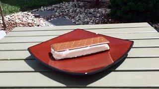 Walmart Ice Cream Sandwich Won't Melt! We Prove It.