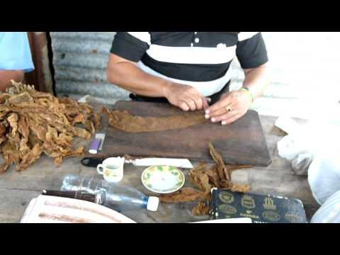 Fabrication d'un cigare à Pinar del Rio (Cuba)