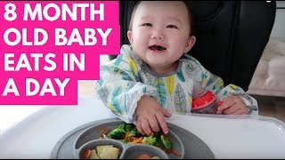 WHAT MY 8 MONTH OLD BABY EATS IN A DAY  | MAKE YOUR OWN SQUEEZE POUCHES | INFANTINO SQUEEZE STATION