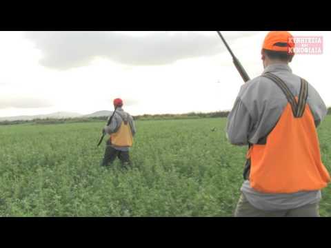 Νίκος Σταθόπουλος: το κυνήγι στην Ελλάδα