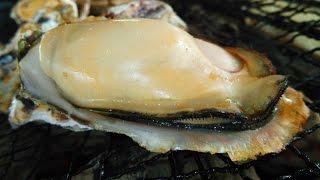 「豊前海一粒かき」牡蠣小屋 Oysters BBQ-2012 冬(1月)