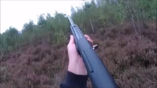 Journée de chasse au petit gibier en Sologne (octobre 2016)  HD