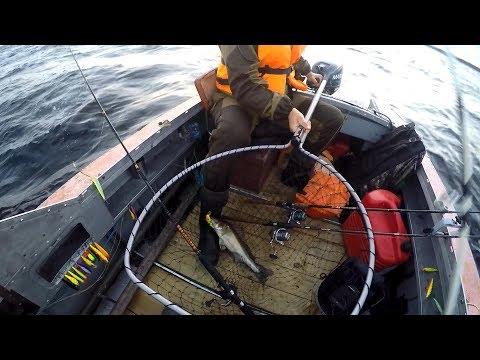 видео рыбалка троллингом на ладоге