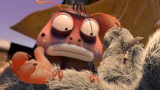 LARVA - MASSEUSE | Cartoon Movie | Cartoons For Children | Larva Cartoon | LARVA Official