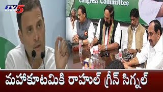 Rahul Gandhi Suggestions to Telangana Congress Leaders On Early Elections