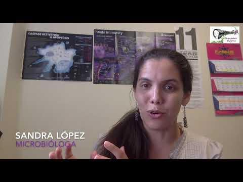 Mujeres Influyentes: Sandra López (Microbióloga)
