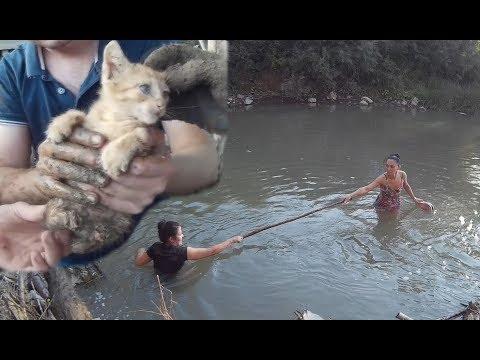 рыбалка в фанагорийской