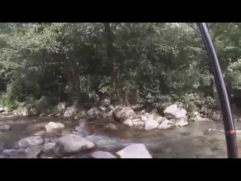 Pêche De La Truite Au Toc En Rivière De Montagne