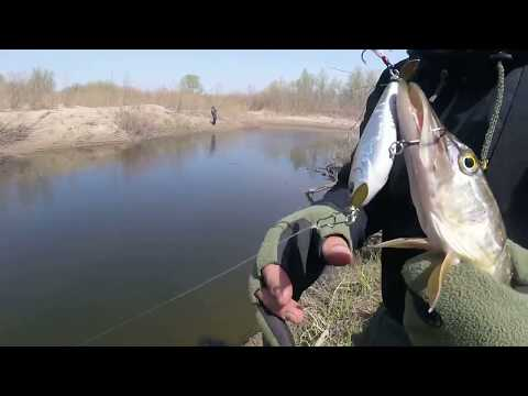 рыбалка в апреле в лен обл видео