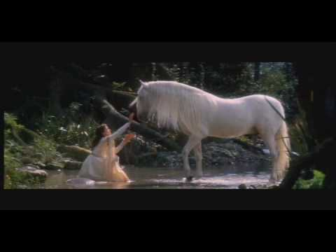 The Maiden And The Unicorn video