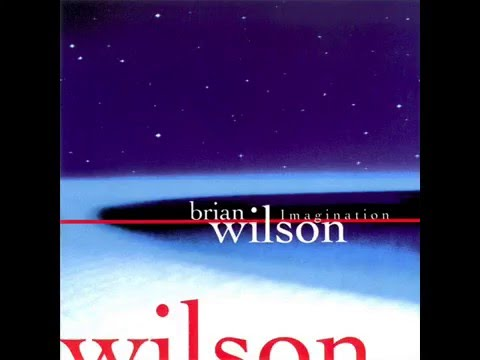 Brian Wilson - South American
