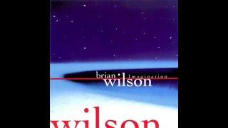 Watch Brian Wilson South American video