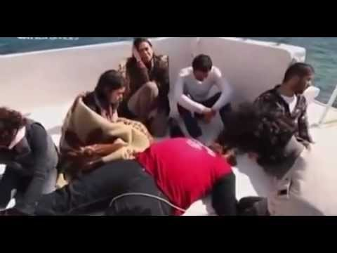 EL Markeb Movie - فيلم المركب