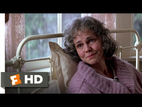 Life is a Box of Chocolates - Forrest Gump (7/9) Movie CLIP (1994) HD