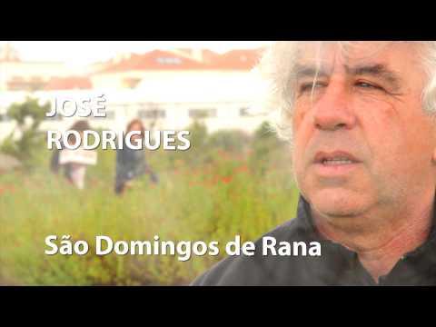 Jos� Rodrigues, a minha hist�ria com S�o Domingos de Rana