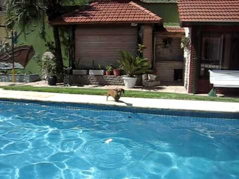 Xuxa Desnuda En La Piscina video
