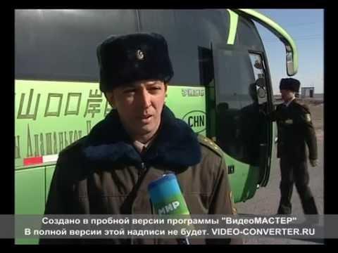 псы на границе Казахстана