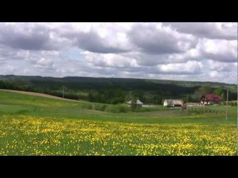 SUWALSKIE KWIATY (Polskie Kwiaty)