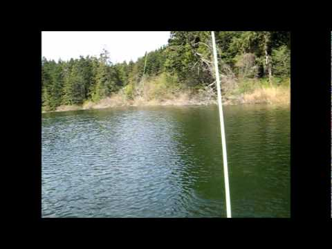 Pass Lake Brown Trout.wmv