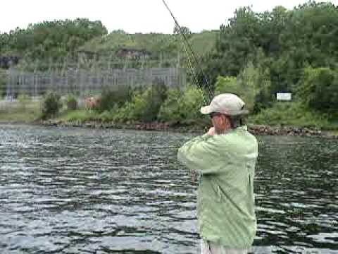 Fly Fishing Bull Shoals Dam , White River, Arkansas