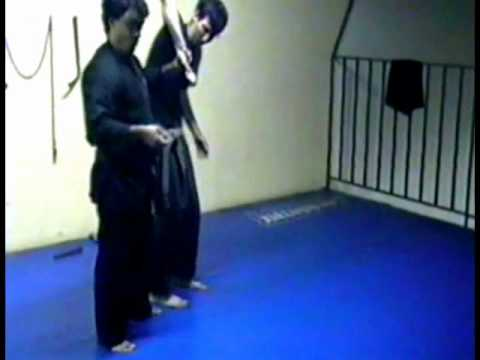Tenshikan Ninjutsu & Aikijujutsu   Techniques submission 3 Image 1