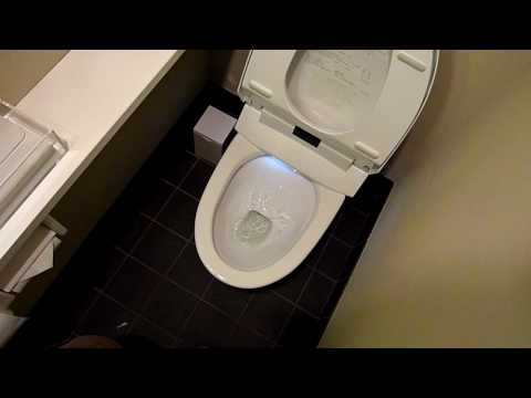 Japanese toilets are fantastic, I want one at home!