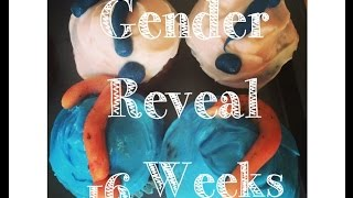 16 weeks pregnant GENDER REVEAL: What Will It Be? A Bouncing Little He or a Pretty Little She?