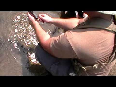 Beretta M92FS VS Gen 4 Glock 17: Torture Test