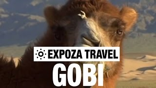 Gobi Desert Travel Video Guide