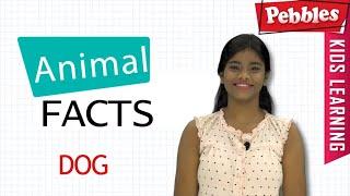 Interesting Animal Facts : Dog | Dog Essay in Bengali | Elephant Song |Dog Story | Learn Animals