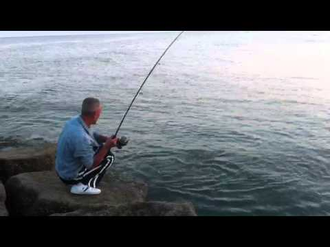Galveston fishing videos for Galveston fishing report seawolf park