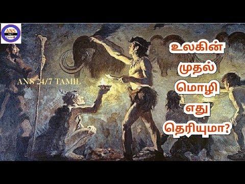 உலகின் முதல் மொழி எது தெரியுமா? | What is the world's first language? - Greek - Egypt - Tamil