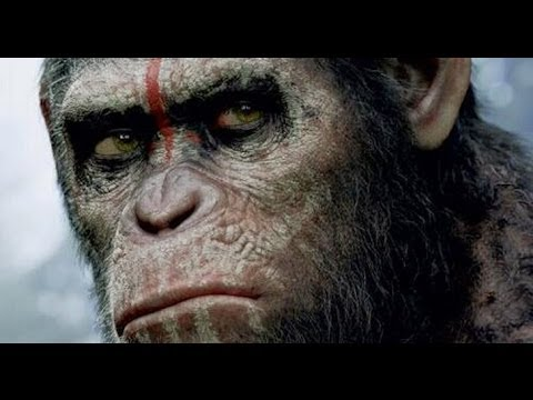 AMC Movie Talk - Final Planet Of The Apes Trailer Review. STRAIGHT OUTTA COMPTON Cast