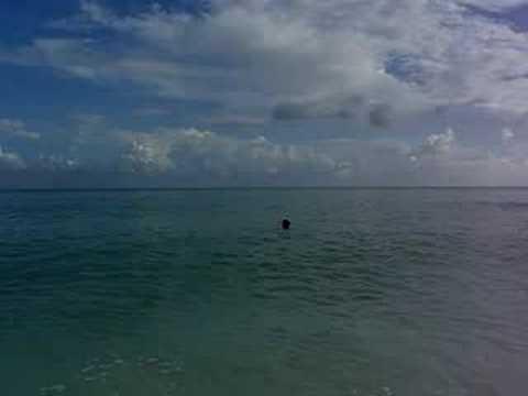 Caribic Beach