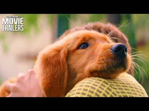A Dog's Purpose | Bailey Learns His Place In A New Clip