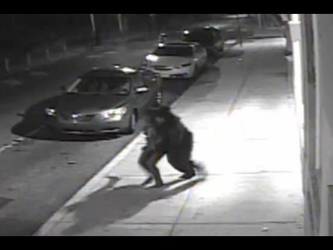 Police: Abduction of Philly woman caught on camera