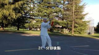 42式太極劍背向慢動作 (2015.04.07) 42 Form Tai Chi Sword Slow moving (Back View)