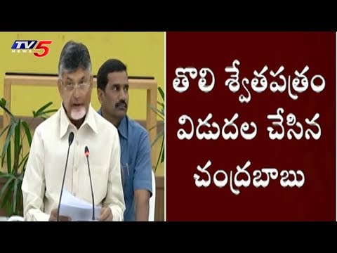 CM Chandrababu Full Speech in Press Meet @Amaravati | TV5 News