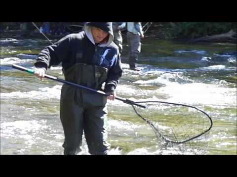 Pulaski NY Salmon River Salmon Fishing
